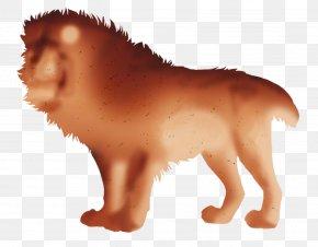 Lion - Lion Dog Big Cat Animal PNG