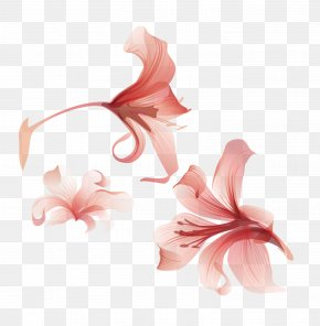 Vector Floral Flowers - Flower Euclidean Vector Adobe Illustrator PNG