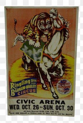 Circus - Poster Circus Text Plakat Naukowy Clown PNG