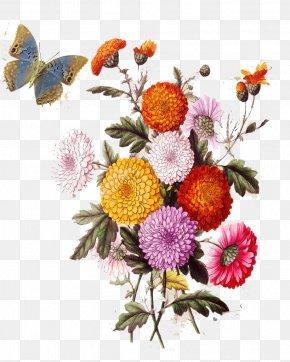 Vintage Flowers Images Vintage Flowers Transparent Png Free Download
