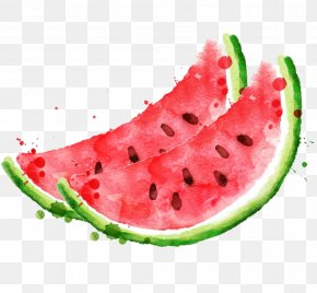 Watermelon Watercolor - Watermelon Royalty-free Stock Photography Clip Art PNG