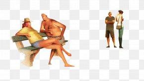 Color Drawings - Text Human Behavior Homo Sapiens Hand Illustration PNG