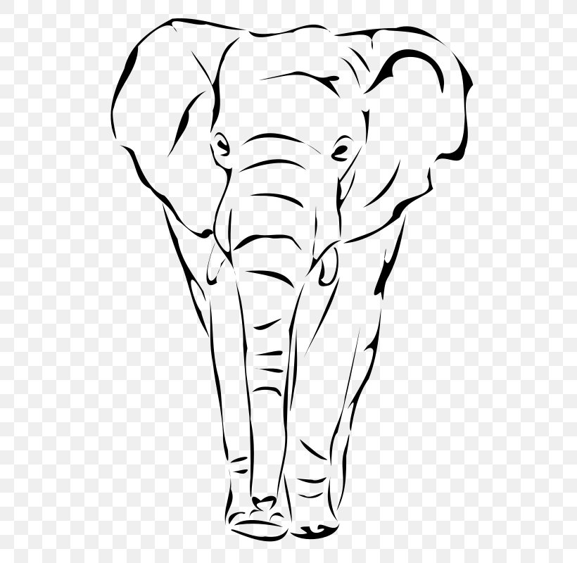 African Elephant Elephantidae Drawing Indian Elephant Clip Art Png 566x800px African Elephant Animal Figure Art Artwork Cyclotis), and the asian elephant (elephas maximus). african elephant elephantidae drawing