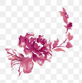 Peony - Beach Rose Flower Rosa Chinensis Moutan Peony Color PNG