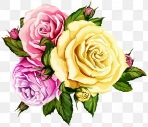 Pink Roses Background Gallery Yopriceville - Garden Roses Image Flower Clip Art PNG