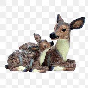 Deer - Red Deer Elk Paper Roe Deer PNG