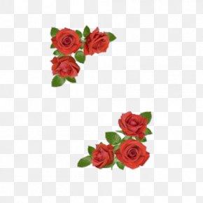 Rose Diagonal Floral Background - Rose Flower Floral Design Clip Art PNG