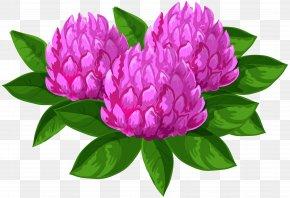 Wild Flowers Clip Art Image - Flower Clip Art PNG