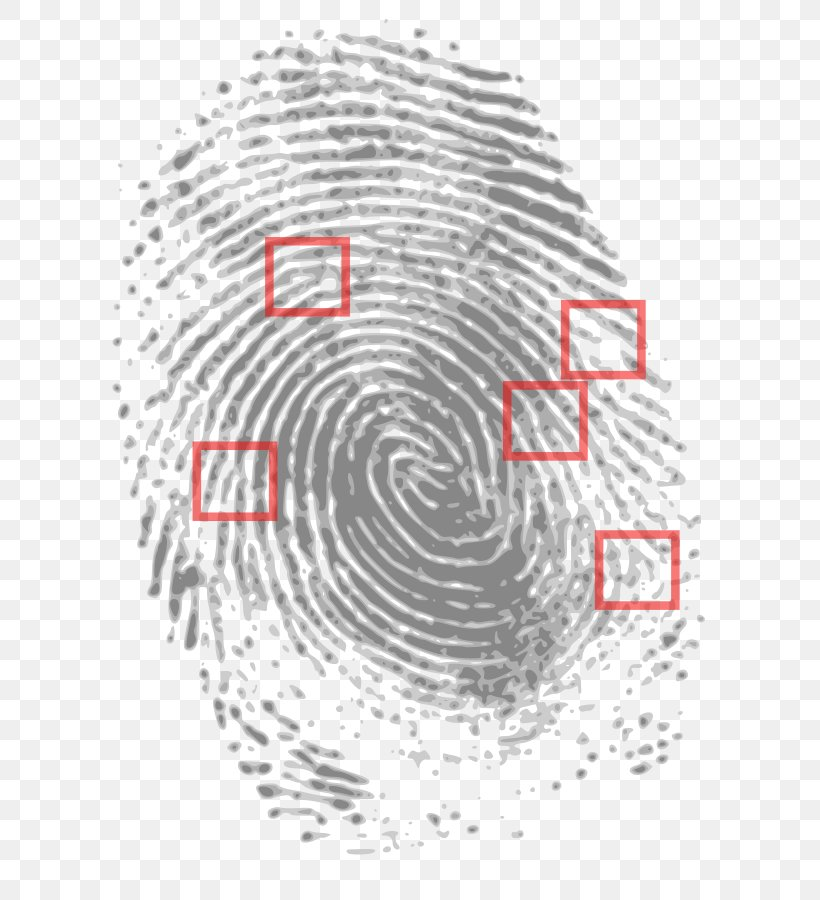 Crime Scene Evidence Forensic Science Court Png 636x900px Crime Area Automotive Tire Black And White Court