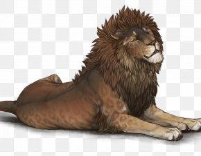 Sunset Lion - Lion Hyena Cheetah Cat Zodiac PNG