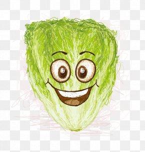 Smile Jun Cabbage - Lettuce Smile Cartoon Illustration PNG