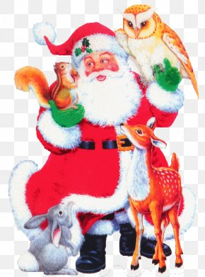 Santa Claus - Santa Claus Christmas Ornament Ded Moroz Clip Art PNG