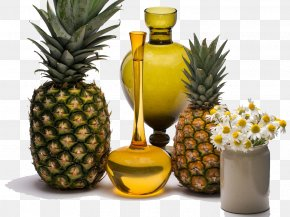 Pineapple Honey - Pineapple Still Life Photography Tropical Fruit PNG