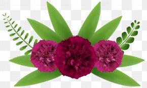 Beautiful Flowers Clip-Art Image - Flower Clip Art PNG