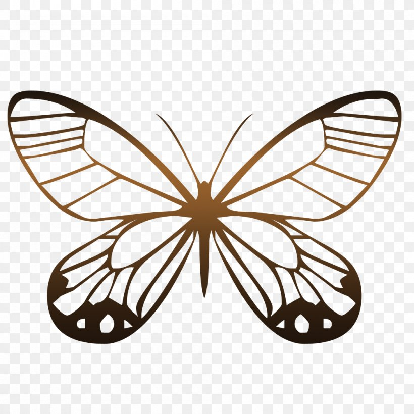 Butterfly Animation Photography, PNG, 1000x1000px ...