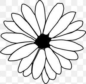 Flower Petal Outline - Flower Line Art Drawing Clip Art PNG