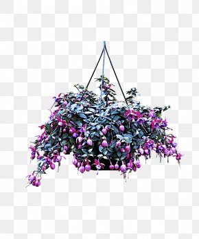 Tree Flower - Purple Violet Plant Flower Tree PNG
