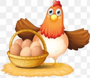 Egg - Egg In The Basket Chicken Clip Art PNG