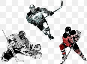 Vector Ice Hockey Players - Ice Hockey Player Hockey Field Hockey Puck PNG