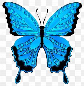 Butterfly Clip Art - Butterfly Morpho Menelaus Clip Art PNG