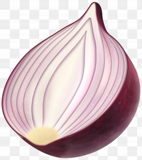 Red Onion Clip Art Image - Red Onion Clip Art PNG