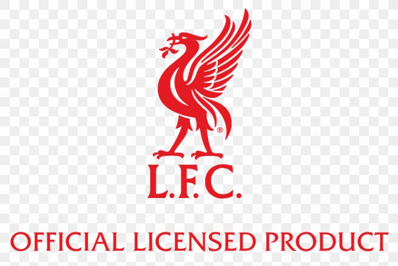 Liverpool F C You Ll Never Walk Alone Logo Decal Sticker Png 860x575px Liverpool Fc Area Beak