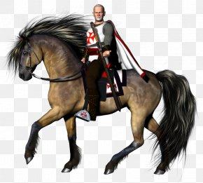 Medival Knight - Knights Templar Crusades PNG