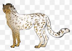 Cheetah - Cheetah Snow Leopard Whiskers Cat PNG