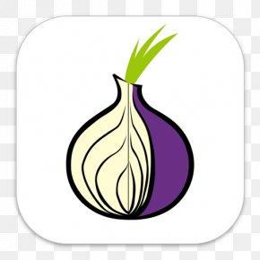 Tor Web Browser Dark Web Anonymous Web Browsing PNG