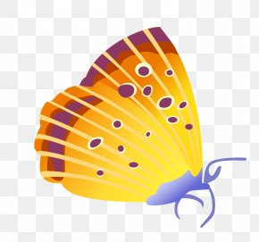 Vector Butterfly - Butterfly Insect Cdr Euclidean Vector PNG
