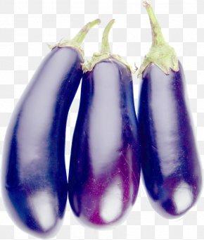 Eggplant - Eggplant Vegetable PNG