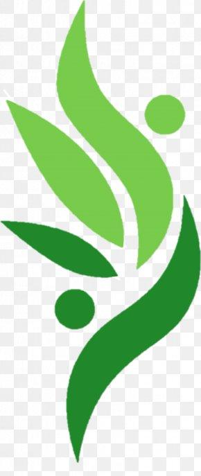 Leaf - Leaf Green Plant Stem Flower Clip Art PNG