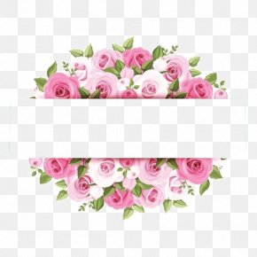 Pink Watercolor Flower Borders - Rose Pink Flower Stock Photography PNG