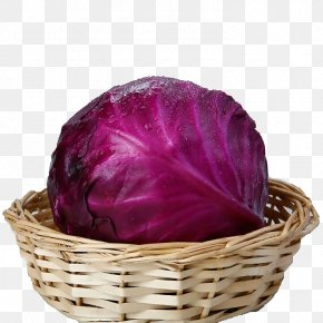 Box Of Purple Cabbage - Red Cabbage Organic Food Brussels Sprout PNG
