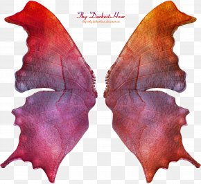 Wings - Fairy DeviantArt Pixie PNG