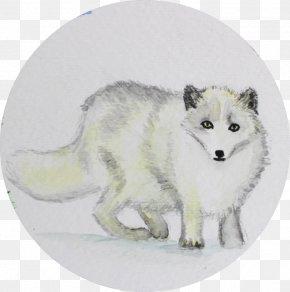 Arctic Fox - Dog Arctic Fox Alaskan Tundra Wolf Red Fox Canidae PNG