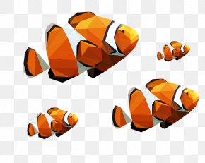Clown Fish Mosaic Morphing - Computer Graphics Polygon PNG