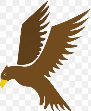 Eagle Bow - Eagle Bird Hawk Flight PNG