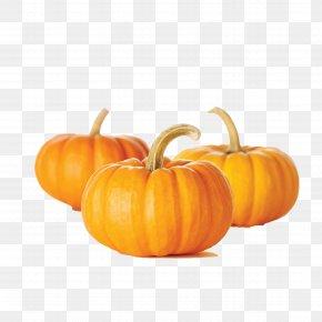 Pumpkin - Pumpkin Bread Muffin Pumpkin Seed Vegetable PNG