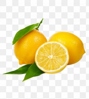 Lemon - Variegated Pink Lemon Cup Drinking PNG