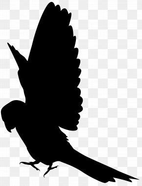 Parrot Silhouette Clip Art Image - Parrot Silhouette Clip Art PNG