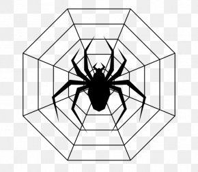 Spider - Drawing Line Art Coloring Book Spider Ausmalbild PNG