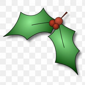 Christmas Holly Pics - Common Holly Christmas Tree Free Content Clip Art PNG