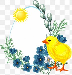 Happy Spring - Easter Egg Chicken Clip Art PNG