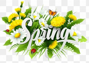 Spring Decorative Image - Spring Season Text PNG