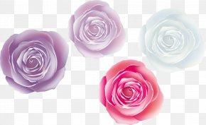 Cartoon Fantasy Rose - Beach Rose Garden Roses PNG