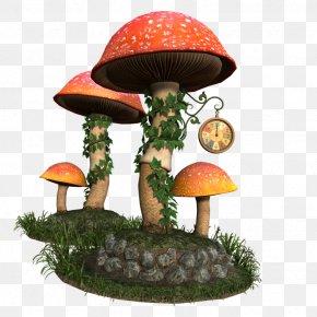Mushroom - Mushroom DeviantArt Photography PNG