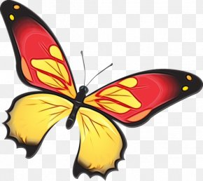 Wing Monarch Butterfly - Monarch Butterfly PNG