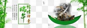 Dragon Boat Festival Material - Flora Brand Pet Font PNG
