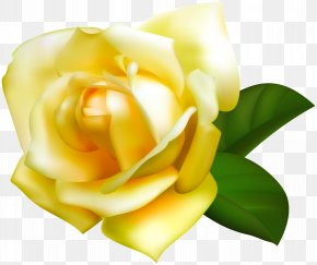 Yellow Rose Transparent Image - Image File Formats Raster Graphics Computer File PNG